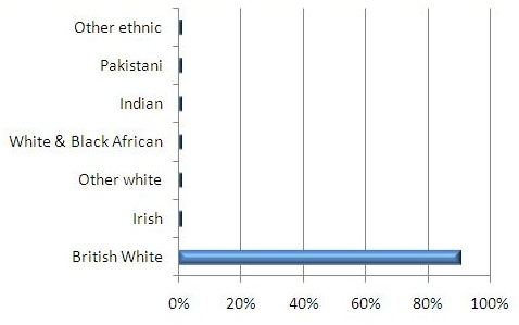Ethnicity profile graph